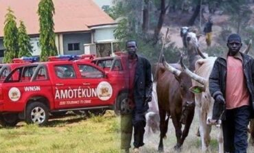 Amotekun denies its operatives were involved in a shootout with herdsmen in Ibarapa and Oke Ogun