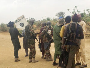 Boko Haram abduct UN worker in Borno State posing as soldiers in military uniform