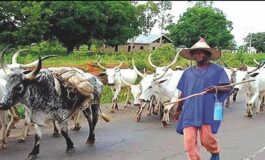Ondo State and federal government set for showdown over expulsion of Fulani herdsmen