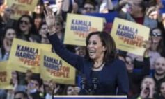 I fully expect our ladies groups to write to Kamala Harris asking her to endorse the Nigerian Women's Charter 2021