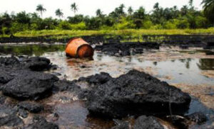 Niger Delta communities secure victory against Shell in Dutch  court over oil spillage