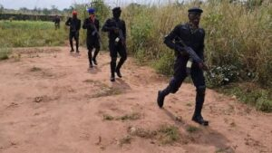 ESN flee from forests in Orsu Local Government Area of Imo State after military reinforcements arrive