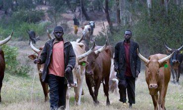 It is up to these governors of Nigeria's six largest states to resolve the current herdsmen crisis with each of them setting aside 5,000 square kilometres of land for a mega ranch
