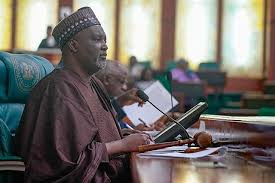 House of Reps deputy speaker says diasporans have no right to comment on what happens in Nigeria