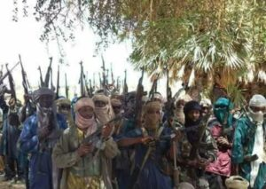 Buhari gives bandits operating in Zamfara forests a 60-day window within which to surrender