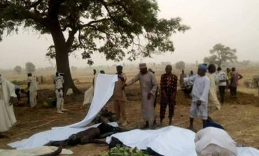 Local Zamfara vigilantes take the law into their hands and execute dozens of suspected bandits