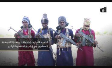 Iswap and Boko Haram agree to join forces and form a united front against Nigerian military