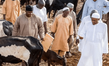 Pandef leader Edwin Clark tells Buhari he has no right to impose open grazing on Nigerians