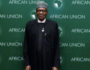 Nigeria's ongoing constitutional review must ensure that there are statutory foreign policy obligations put in place