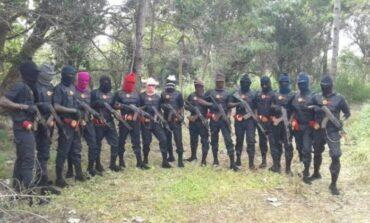 Nigerian Army accuses ESN gunmen of killing two of its soldiers in Enugu State