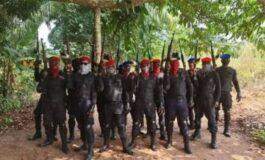 Imo State Police Command arrests supplier of Indian hemp to Ipob and ESN fighters