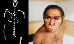 Could the discovery of this new specie Homo Naledi tell us something about negroid people and explain Africa's lagging behind the rest of the human race
