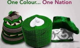 10 reasons why being Nigerian is a great honour and privilege which we should never take for granted